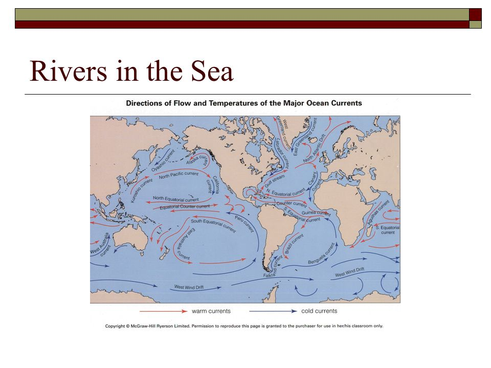 Rivers in the Sea