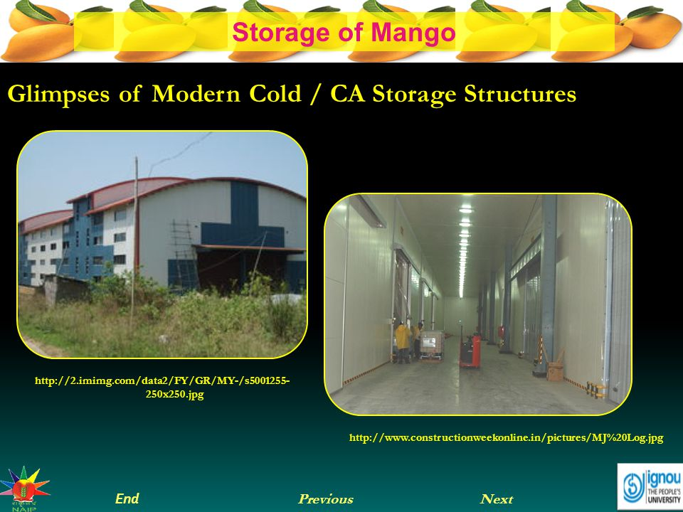 Glimpses of Modern Cold / CA Storage Structures