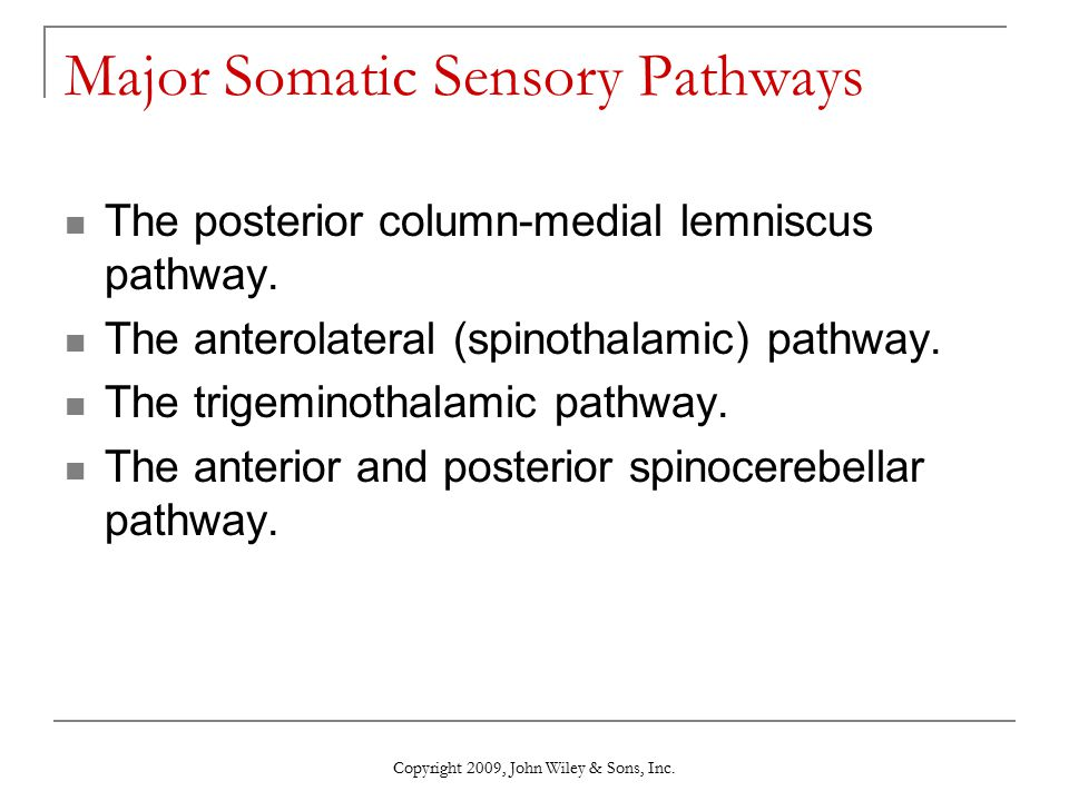 Major Somatic Sensory Pathways
