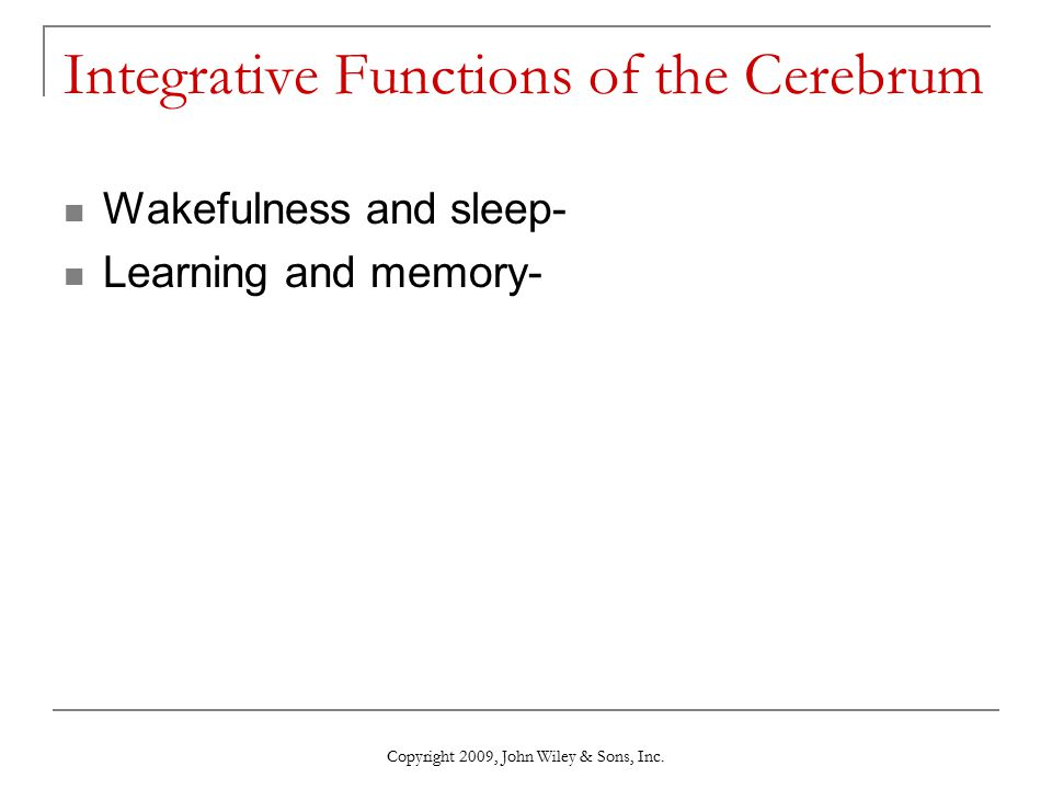 Integrative Functions of the Cerebrum