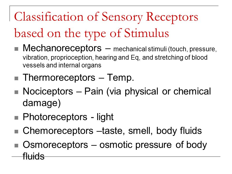 Classification of Sensory Receptors based on the type of Stimulus