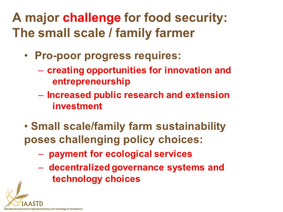 A major challenge for food security: The small scale / family farmer