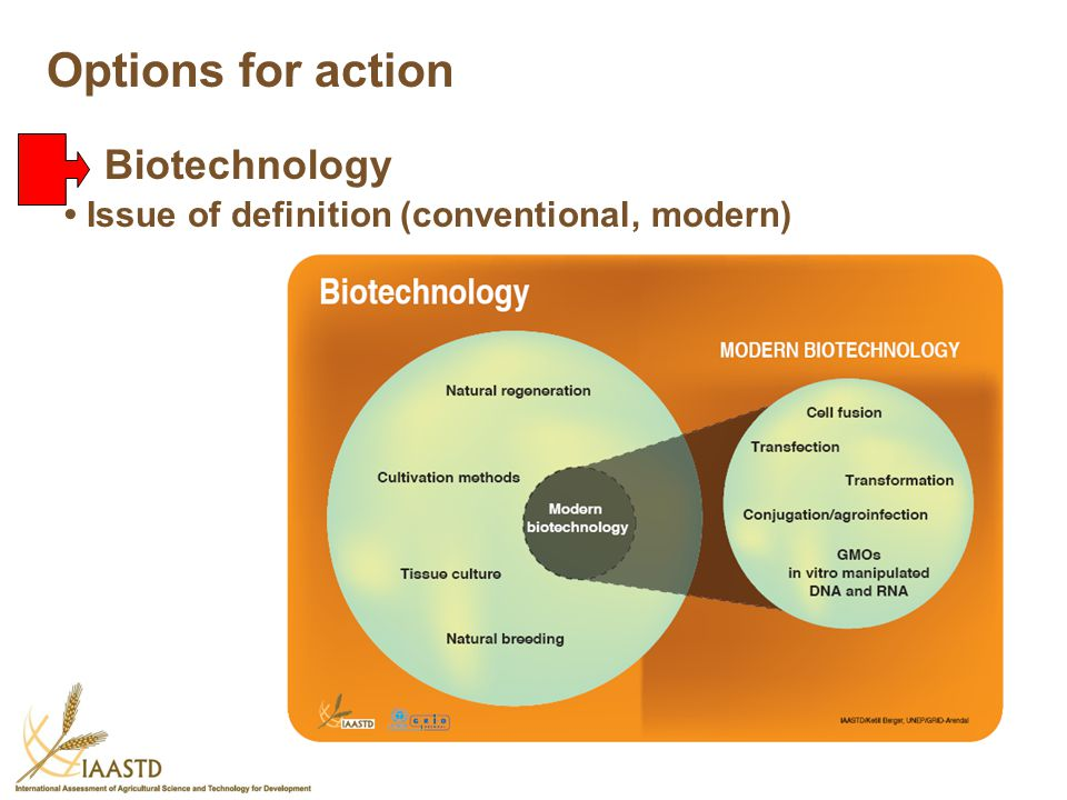 Options for action Biotechnology