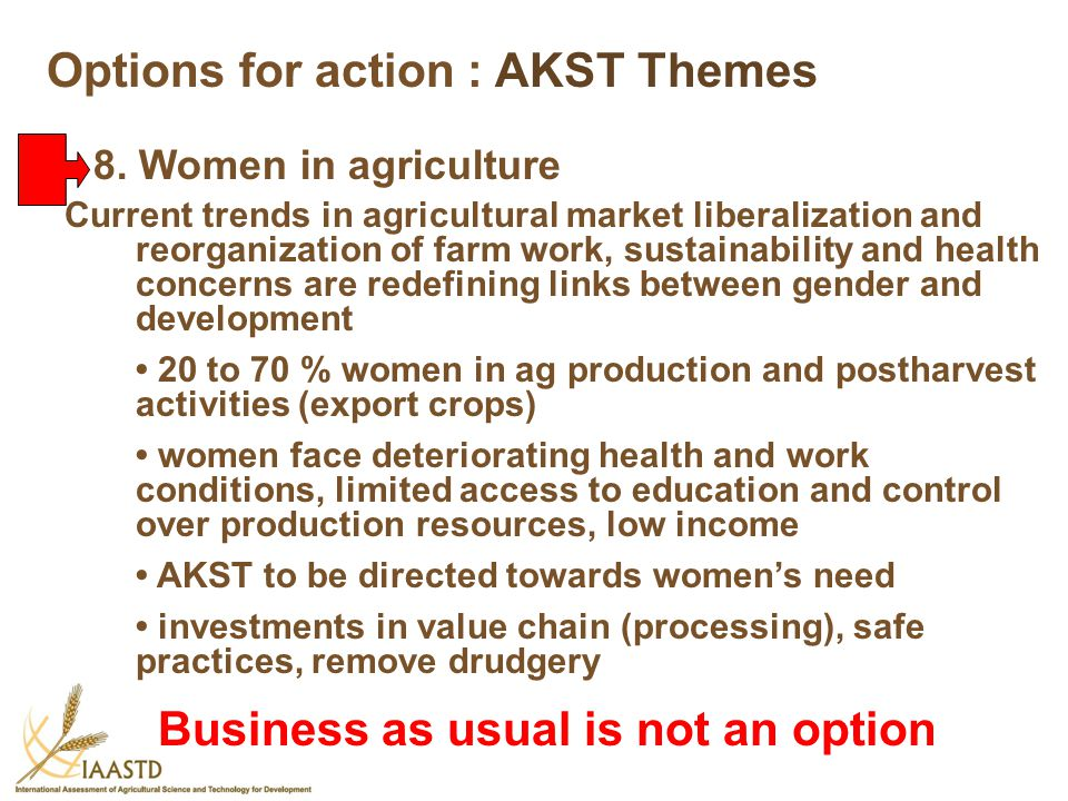 Options for action : AKST Themes