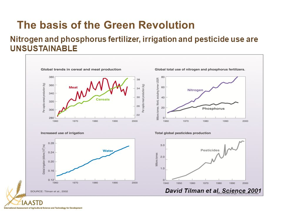 The basis of the Green Revolution