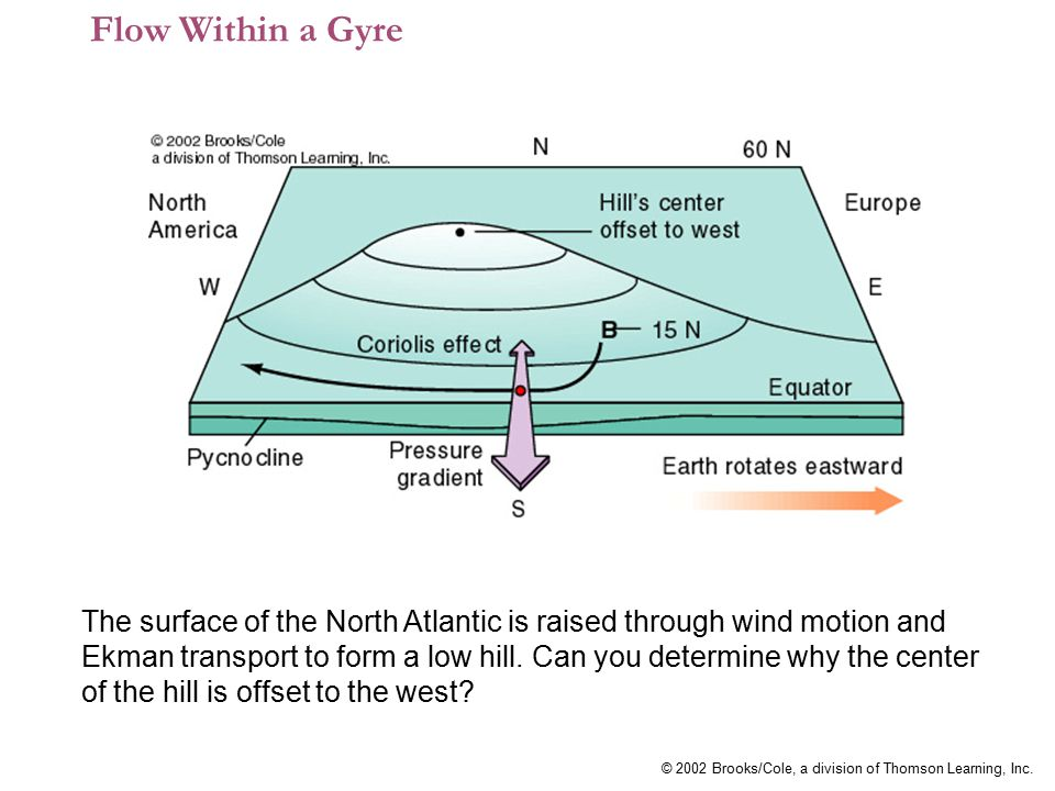 Flow Within a Gyre
