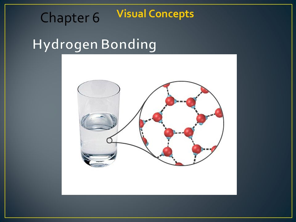 Visual Concepts Chapter 6 Hydrogen Bonding