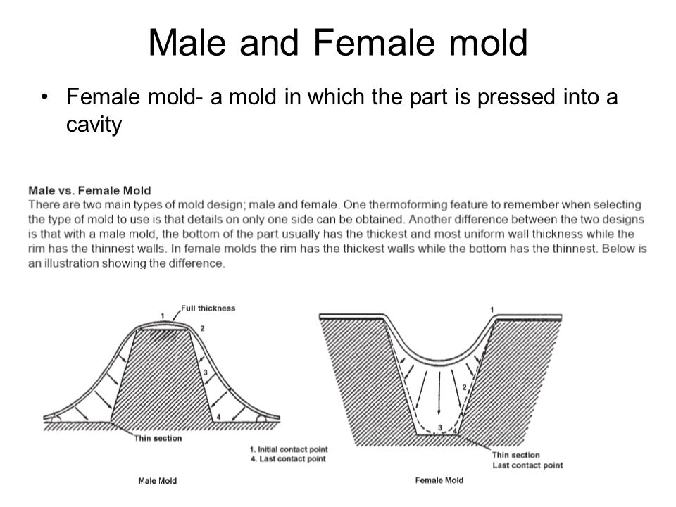 Male and Female mold Female mold- a mold in which the part is pressed into a cavity