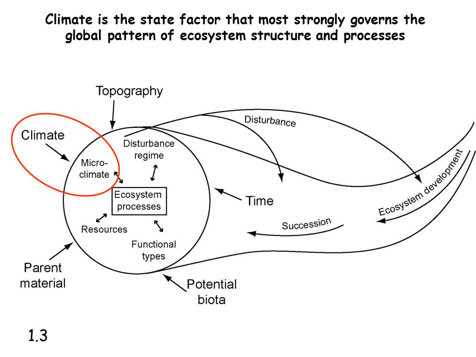 Climate is the state factor that most strongly governs the global pattern of ecosystem structure and processes