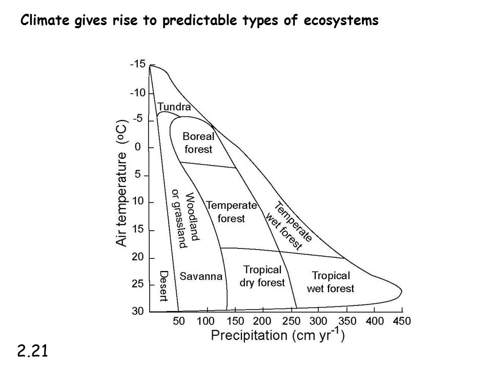 Climate gives rise to predictable types of ecosystems