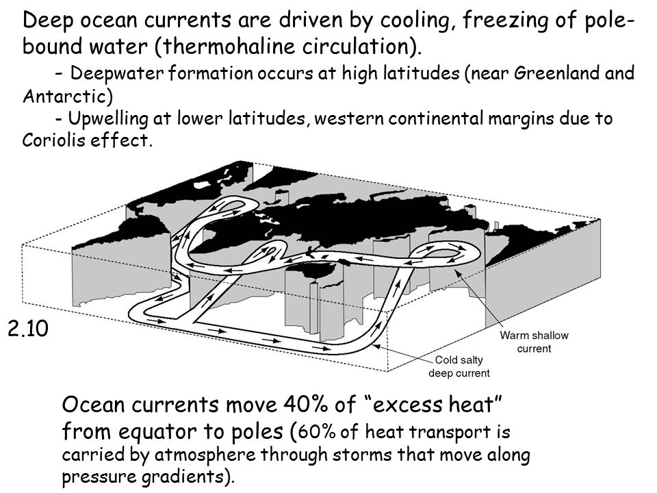 Deep ocean currents are driven by cooling, freezing of pole-bound water (thermohaline circulation).