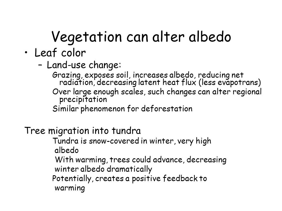 Vegetation can alter albedo