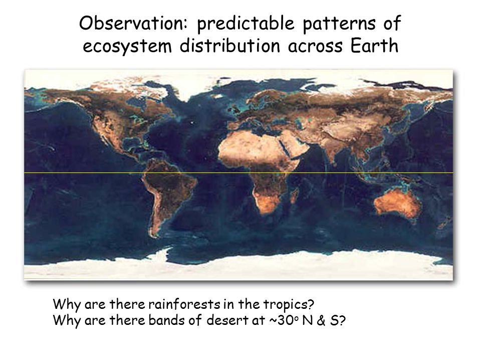 Observation: predictable patterns of ecosystem distribution across Earth