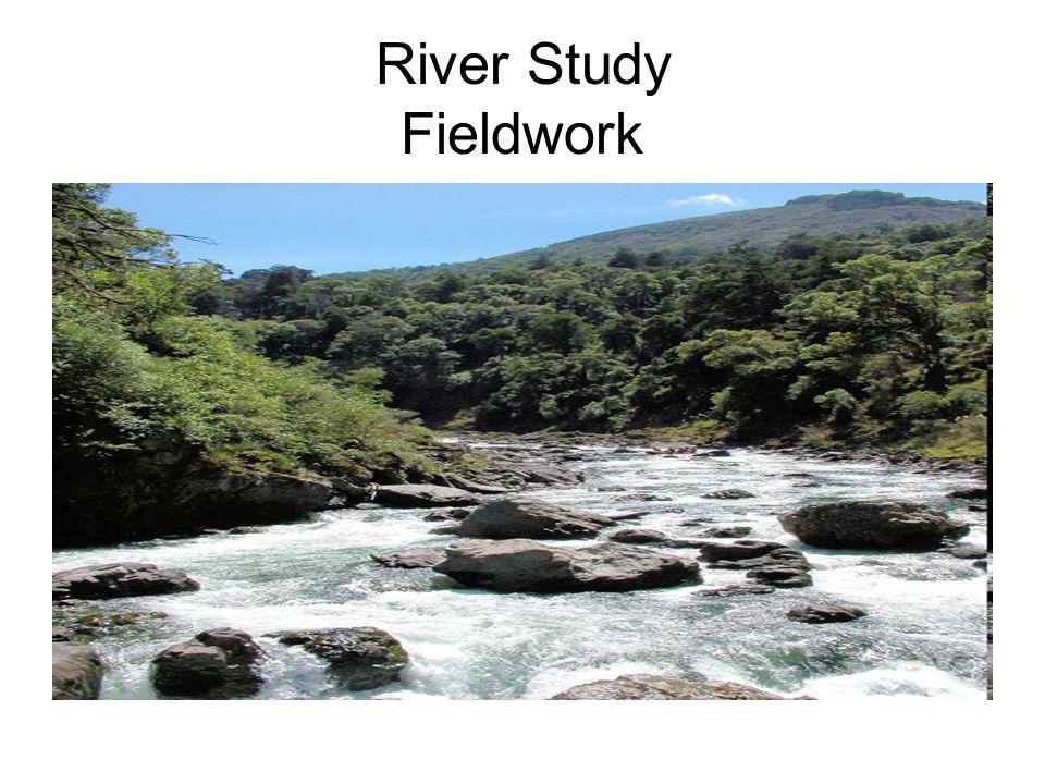 River Study Fieldwork