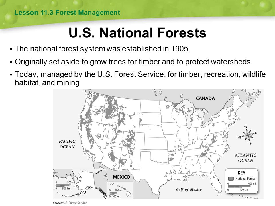 the national forest management act Sponsored by don young r-alaska introduced to the house on sept 29, 2015 -- state national forest management act of 2015 this bill directs the department of agriculture, through the forest service, to convey to a state up to 2 million acres of eligible portions of the national forest system (nfs) in it that it elects to acquire through enactment by the state legislature of a bill meeting.