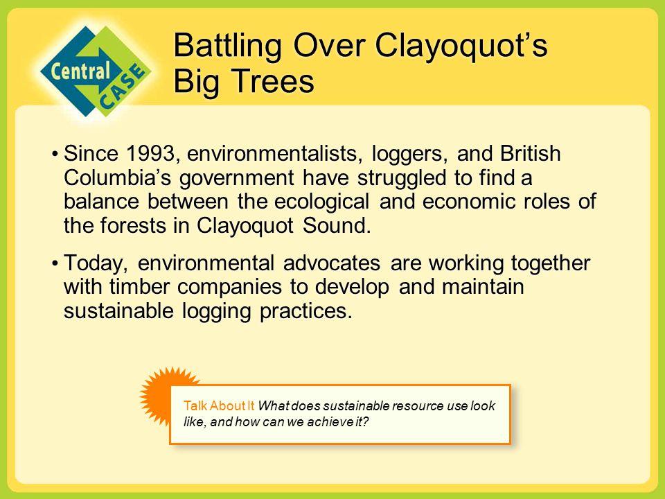 Battling Over Clayoquot's Big Trees