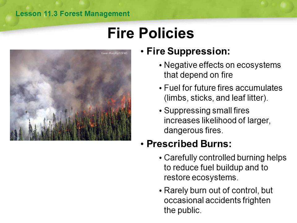 Fire Policies Fire Suppression: Prescribed Burns: