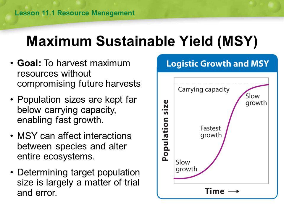 Maximum Sustainable Yield (MSY)