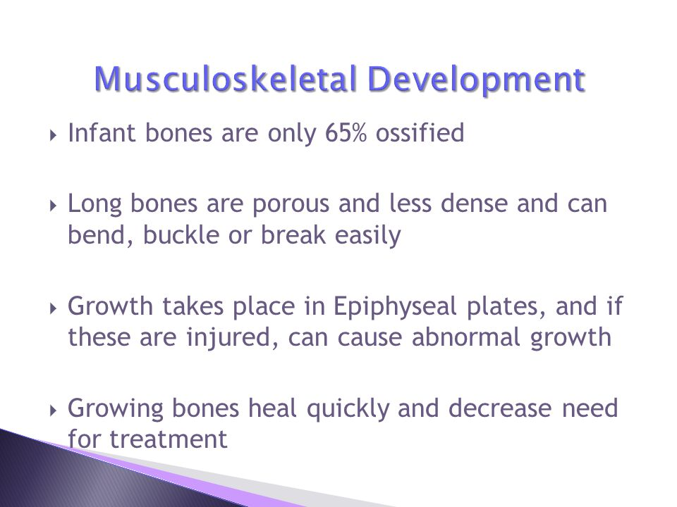 Musculoskeletal Development