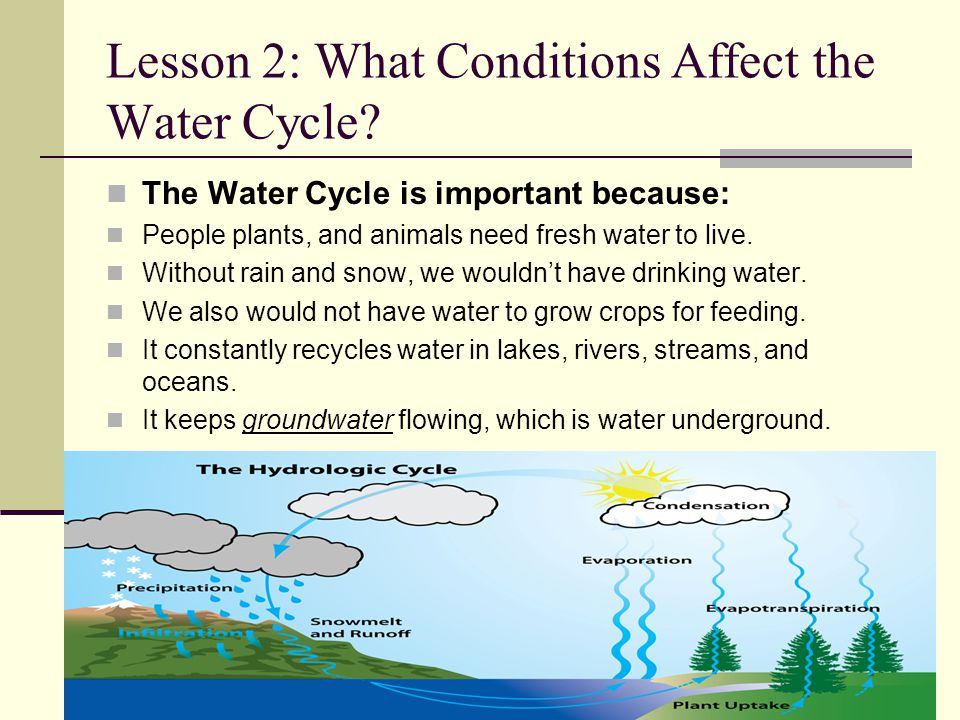 Lesson 2: What Conditions Affect the Water Cycle