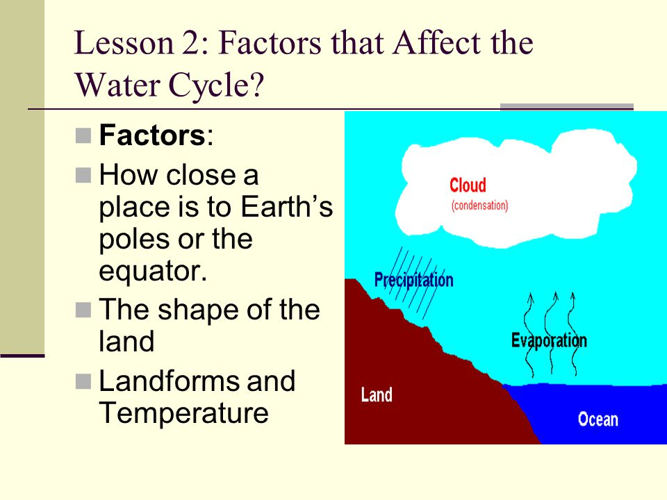 Lesson 2: Factors that Affect the Water Cycle