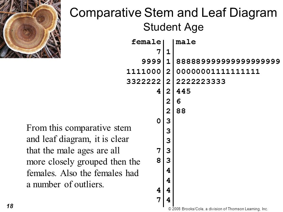 Comparative Stem and Leaf Diagram Student Age