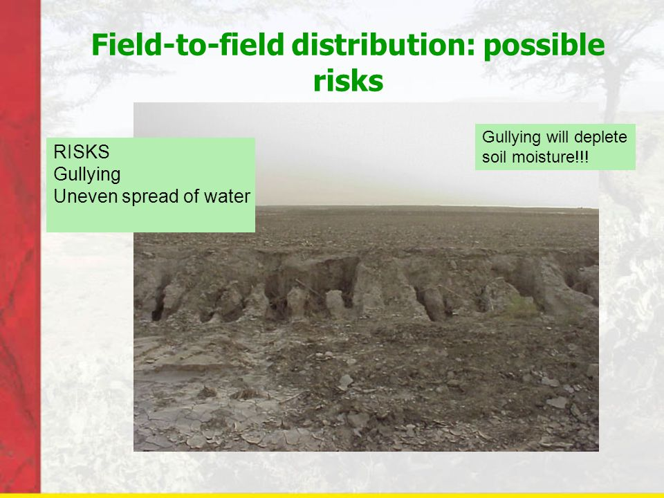Field-to-field distribution: possible risks