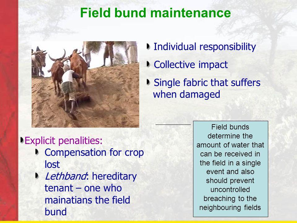 Field bund maintenance