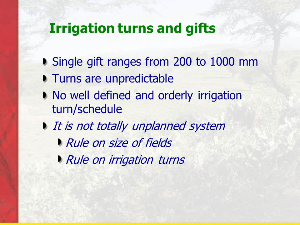 Irrigation turns and gifts