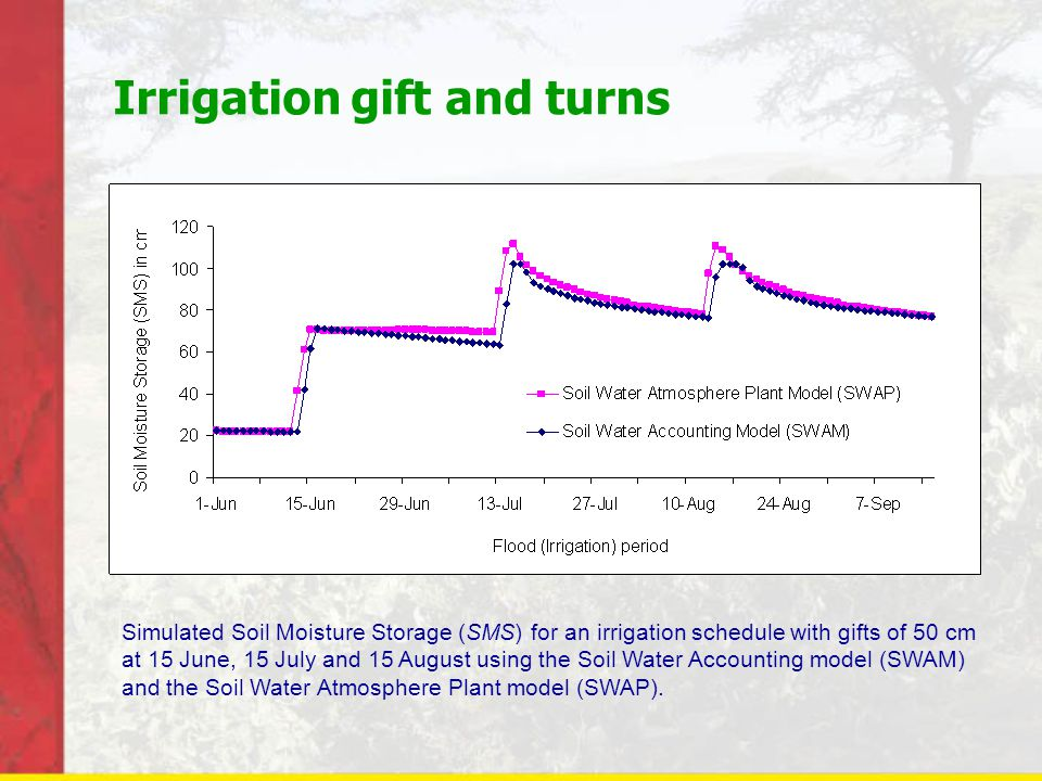 Irrigation gift and turns