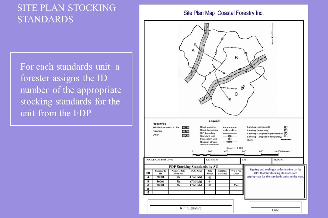 SITE PLAN STOCKING STANDARDS.