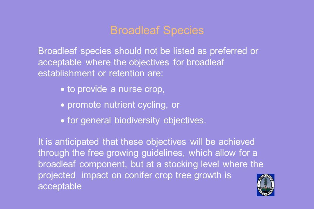 Broadleaf Species