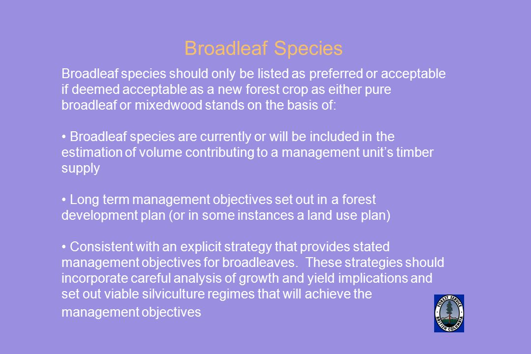 Broadleaf Species