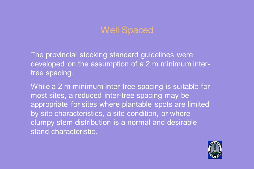 Well Spaced The provincial stocking standard guidelines were developed on the assumption of a 2 m minimum inter-tree spacing.