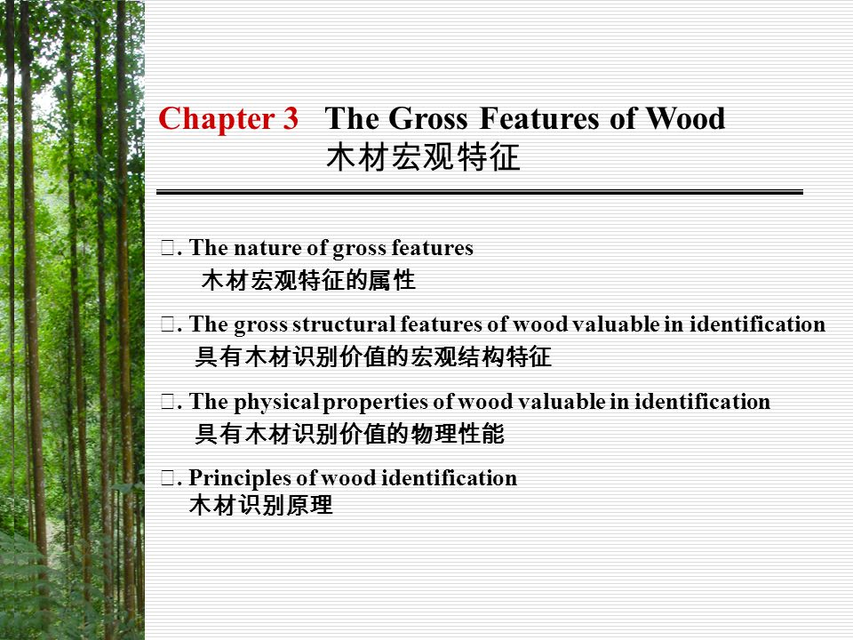 Chapter 3 The Gross Features of Wood 木材宏观特征