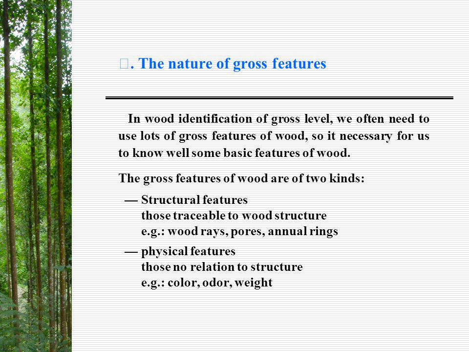 Ⅰ. The nature of gross features