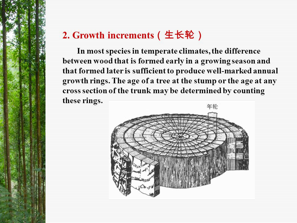 2. Growth increments(生长轮)