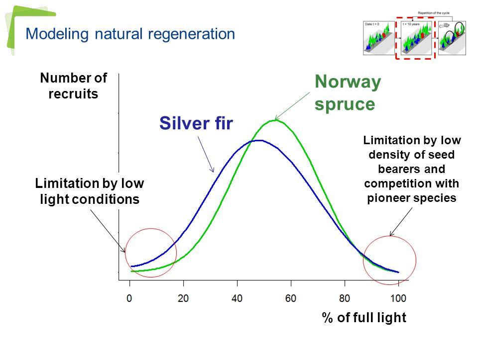 Modeling natural regeneration