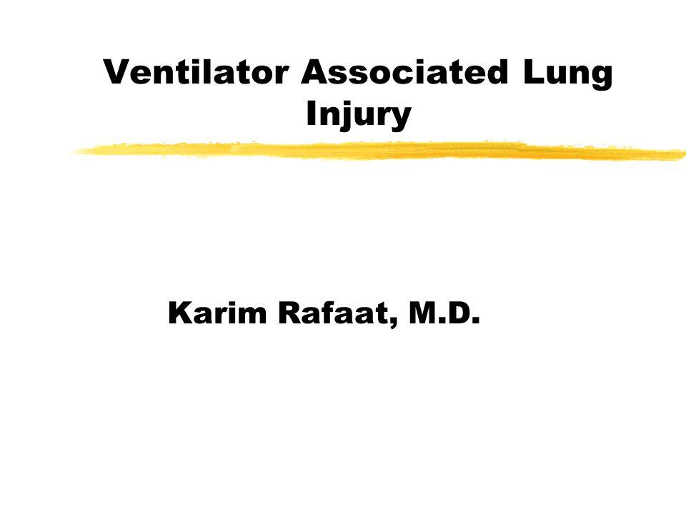 Ventilator Associated Lung Injury