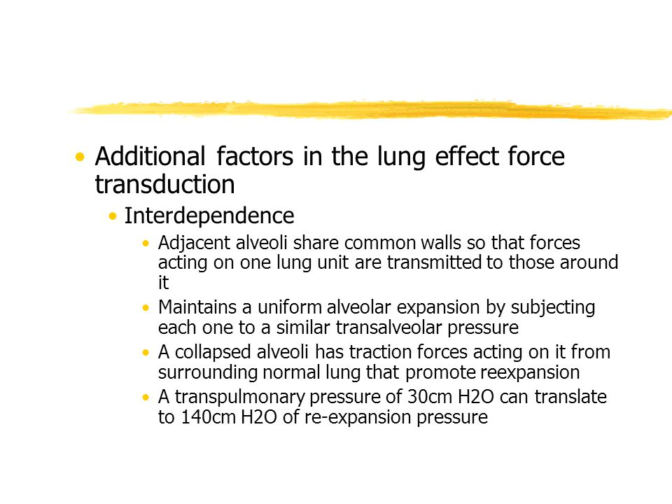 Additional factors in the lung effect force transduction