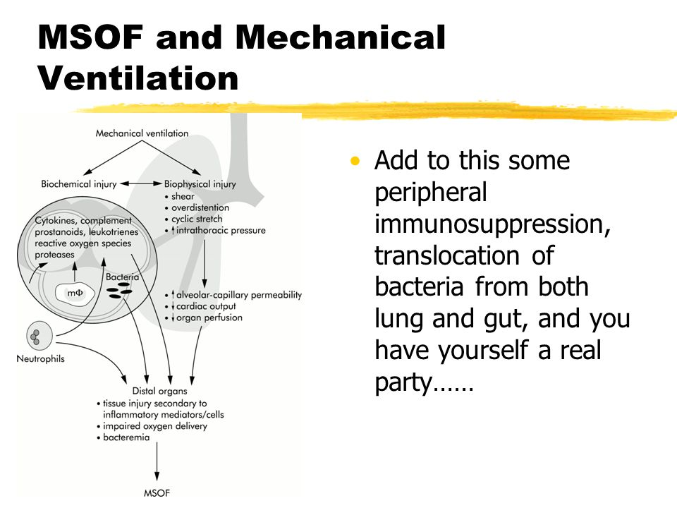 MSOF and Mechanical Ventilation