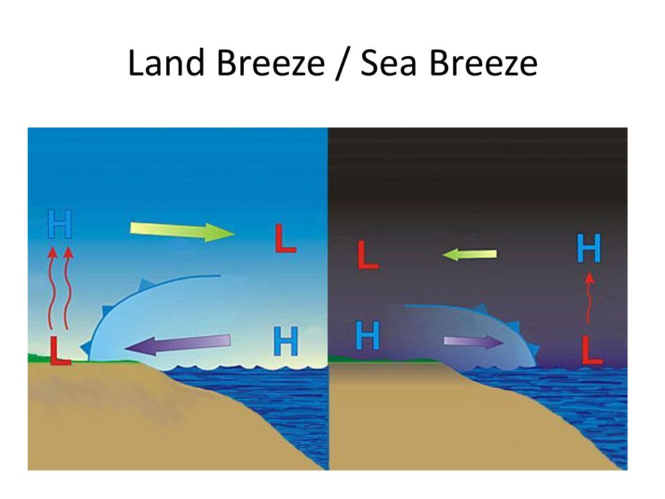 Land Breeze / Sea Breeze
