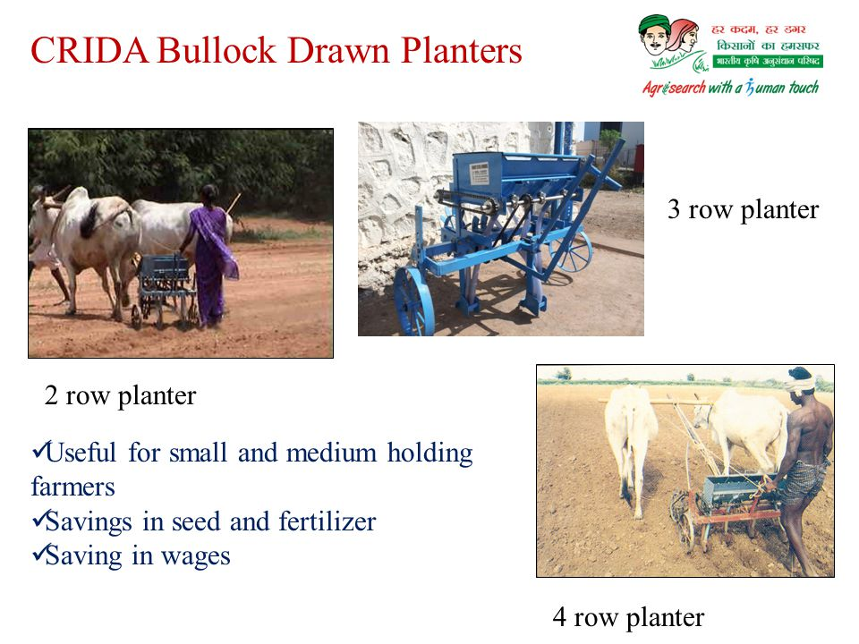 CRIDA Bullock Drawn Planters