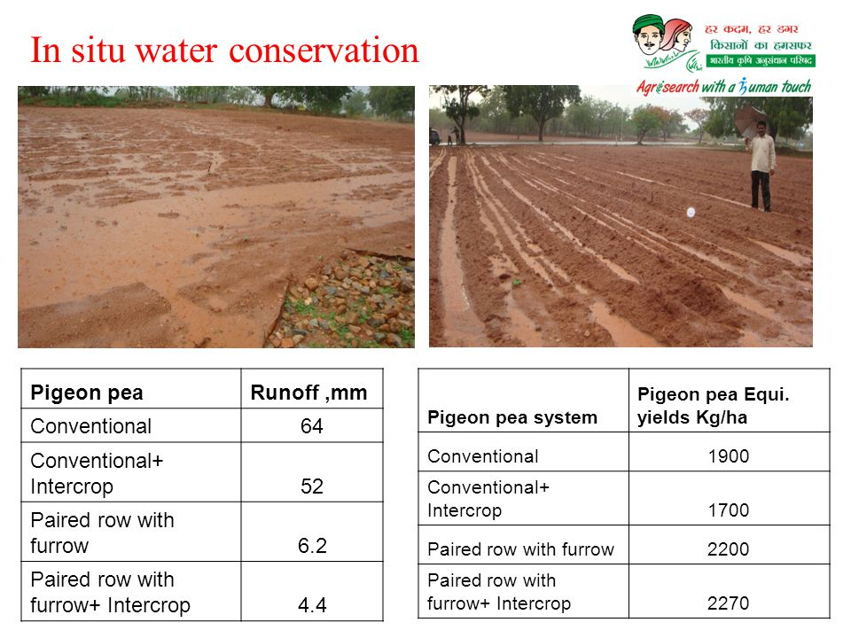 In situ water conservation