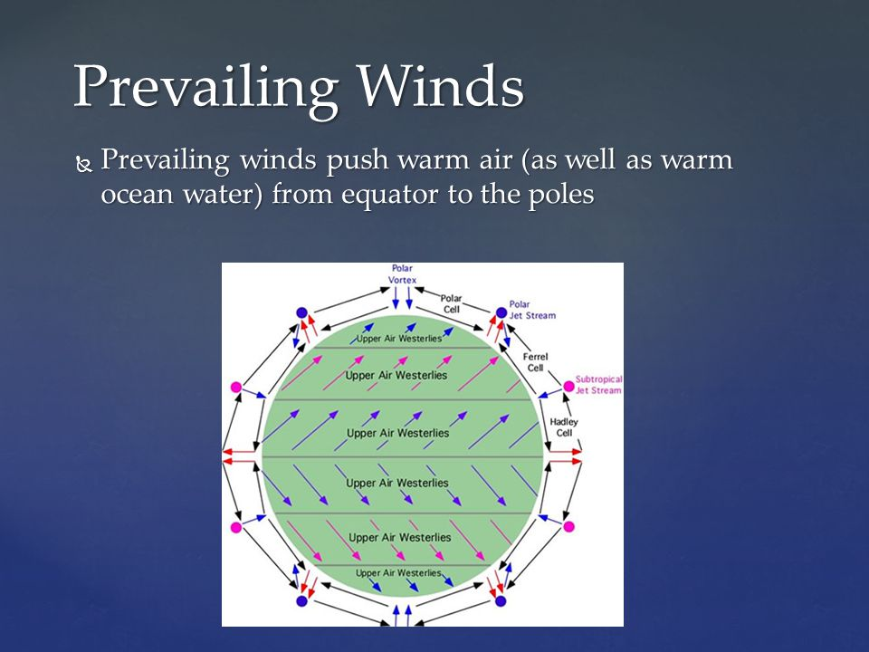 Prevailing winds push warm air (as well as warm ocean water) from equator to the poles