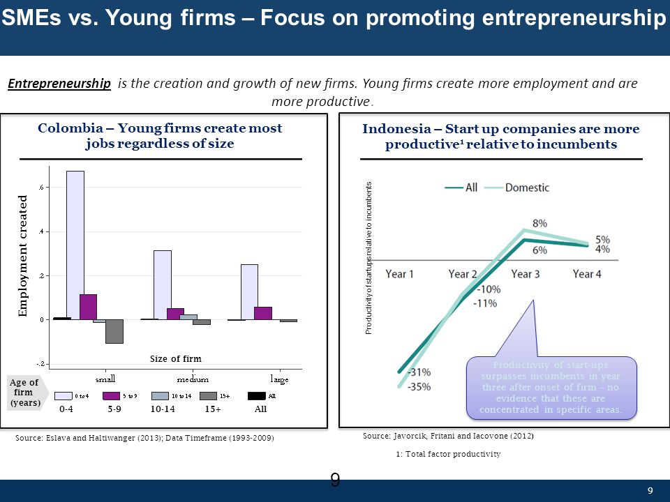 SMEs vs. Young firms – Focus on promoting entrepreneurship