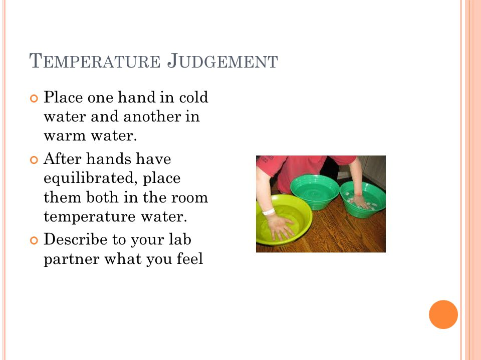 Temperature Judgement