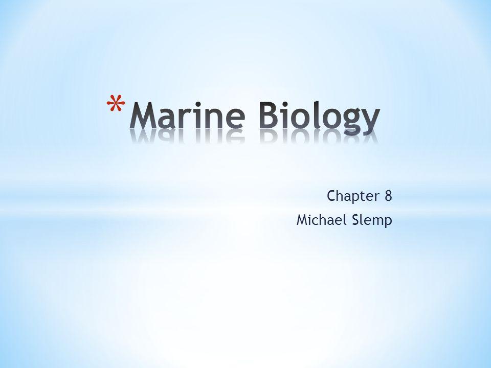 Marine Biology Chapter 8 Michael Slemp