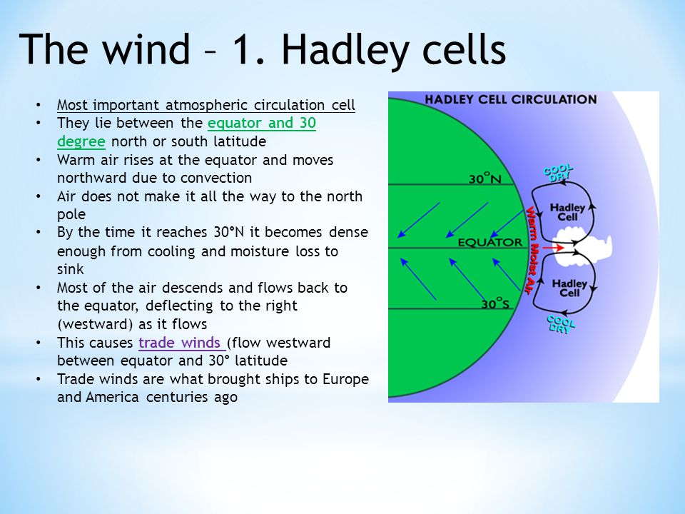 The wind – 1. Hadley cells Most important atmospheric circulation cell