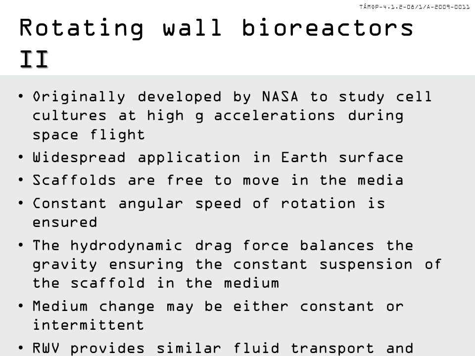 Rotating wall bioreactors II